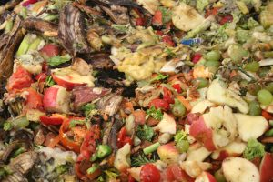 WHAT'S NEW WITH FOOD COMPOSTING food-good-for-animals
